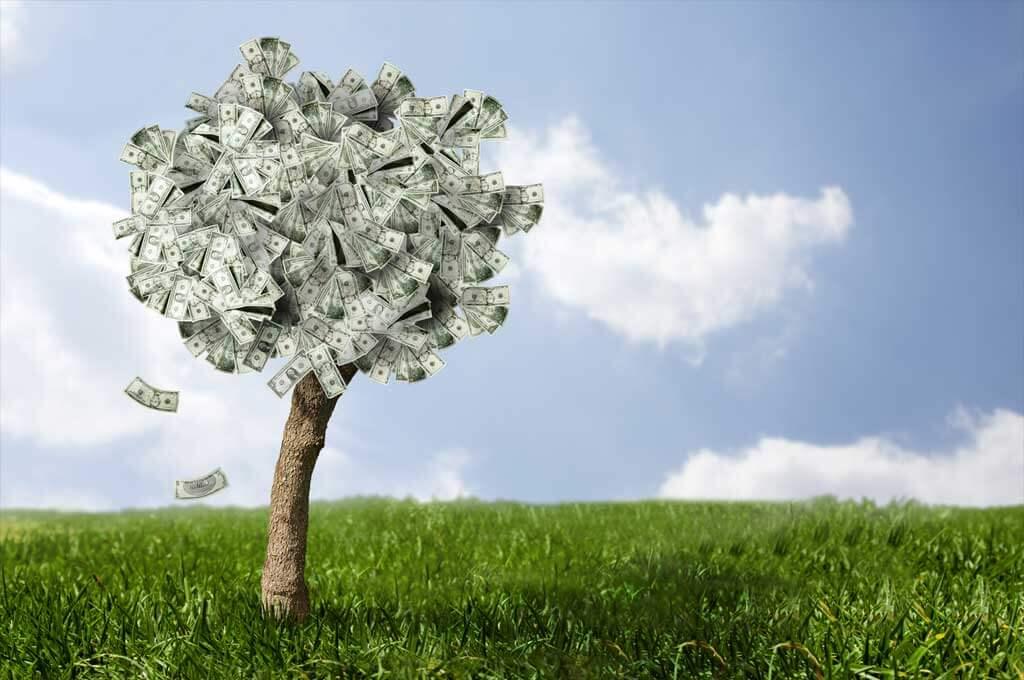 Insurance-Companies-Money-Tree